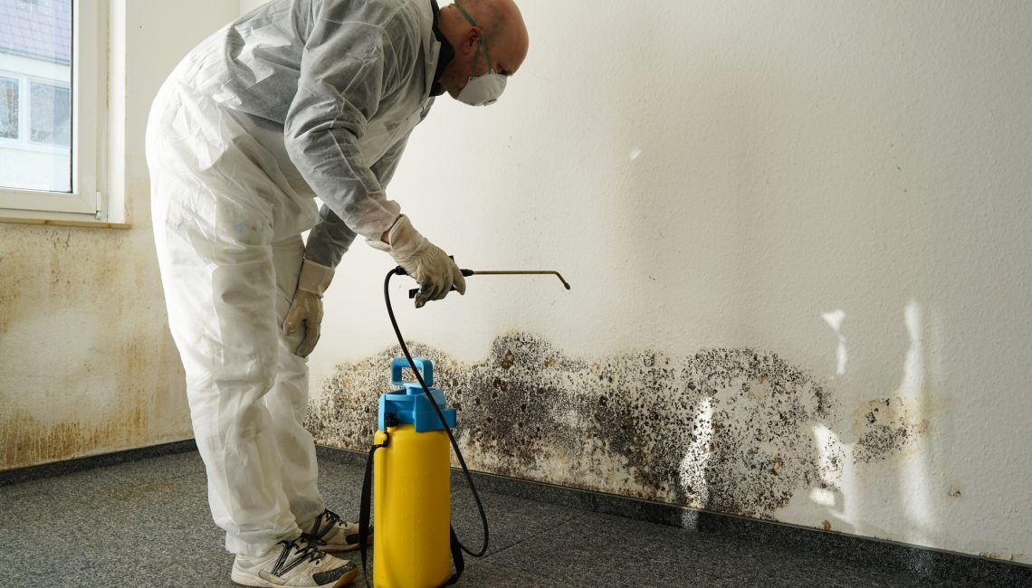 Mold Remediation Tips