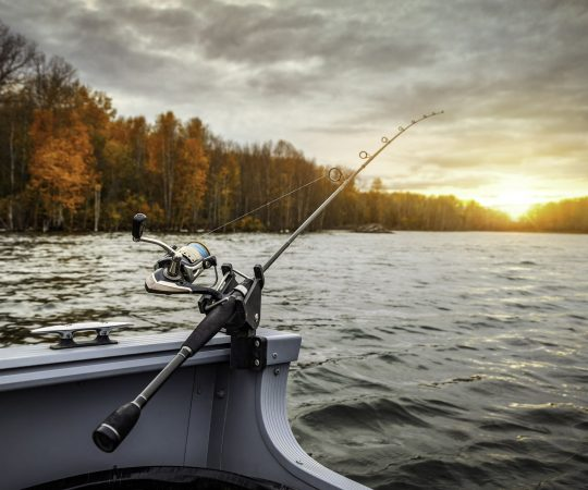 Things You Should Consider Before You Buy a Fish Finder